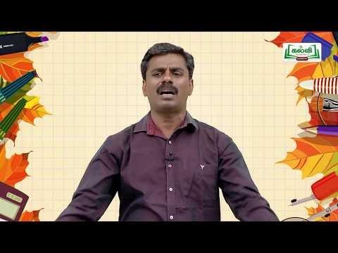 வகுப்பு 10 அறிவியல் தாவரங்கள் மற்றும் விலங்குகளில் இனப்பெருக்கம் பகுதி2  Kalvi TV