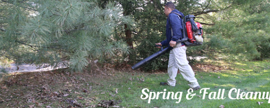 Spring & Fall Lawn Cleanup Services |