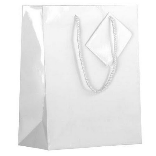 google express jam paper glossy gift bags with rope handles
