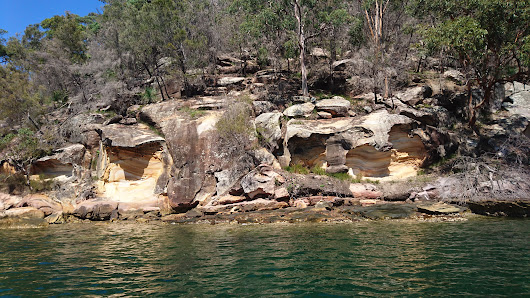 Monday Geology Picture: Weathered Sandstone at Cottage Point, Australia - Georneys