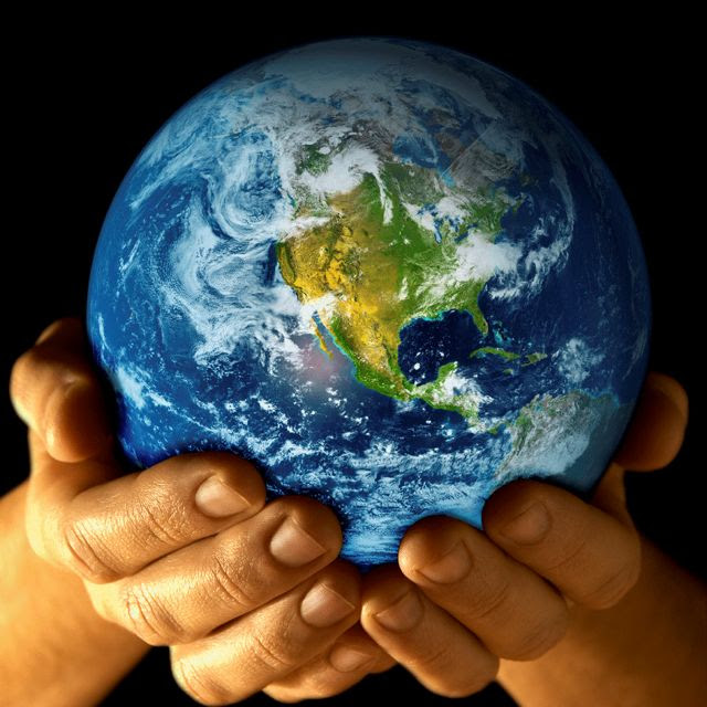 Save Treessave Earthprotect Nature Daily Inspirations For