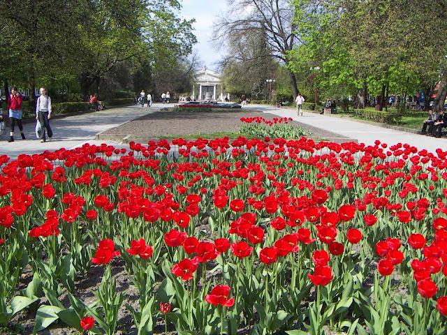 Western Ukraine: Ternopil City Center