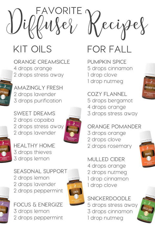 Favorite Diffuser Recipes – Using Starter Kit Oils and FALL scents! 🍁🍃