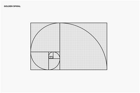 golden ratio  logo design