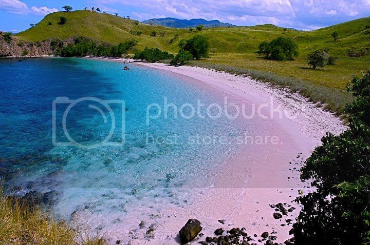 Backpacking Ke Labuan Bajo - Pulau Komodo