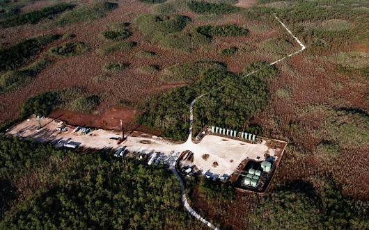 Oil company gets OK to expand oil search in South Florida preserve