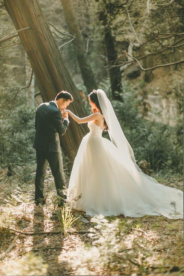 Wedding Ideas Wedding Photography Ideas