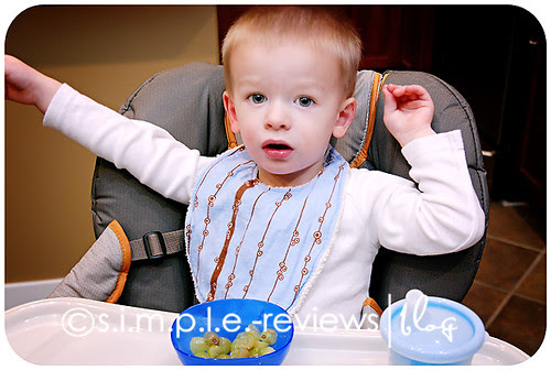 turtle park tots bib review and giveaway