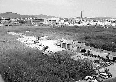 foto V. MARÍ (Diario de Ibiza, 05/04/2007)
