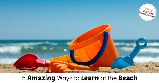 5 Amazing Ways to Learn at the Beach
