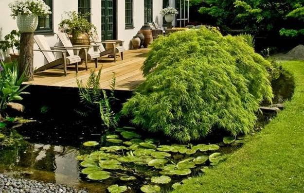 Small Backyard Japanese Garden Ideas