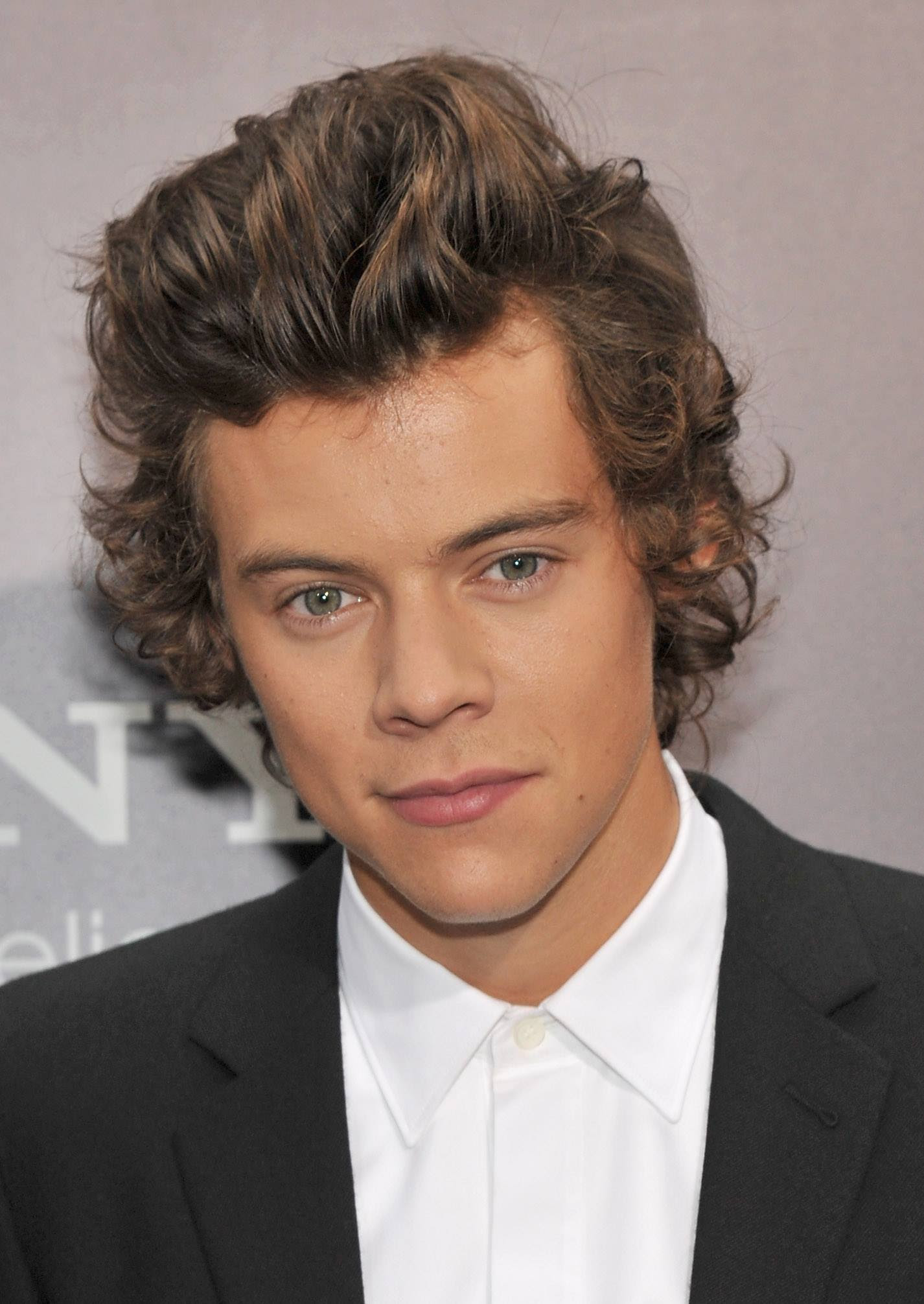 Hot Harry Styles - One Direction Photo (36818333) - Fanpop