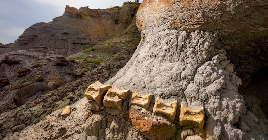 Utah's 'Grand Staircase' Leads Back in Time to Dinosaur Shangri-La