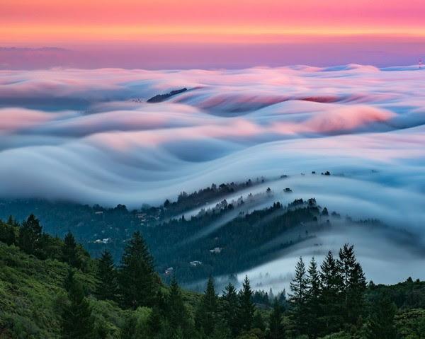 Vagues de brouillard, photographie de Nicholas Steinberg et Lorenzo Montezemolo