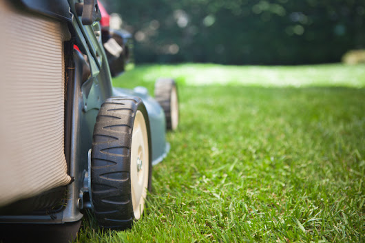 6 Strategies for Saving Money on Lawn Care This Year