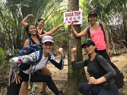 Jungle Babes in the Bukit Saga – Apek Hill Adventure