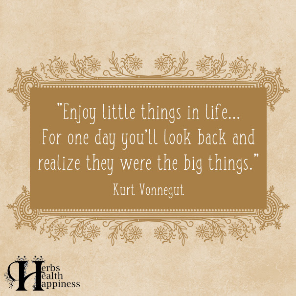 Enjoy Little Things In Life ø Eminently Quotable Quotes Funny