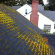 Portland Moss Removal And Roof Treatment. Do You Need It? - PDX Clean King