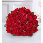 1-800-Flowers Two Dozen Red Roses Bouquet Only