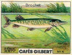 gilbert rivière 4