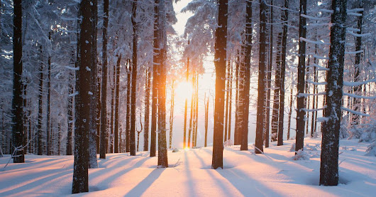 How to boost your vitamin D intake in the dead of winter