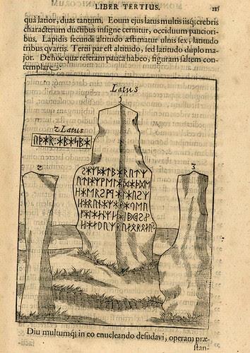 Danicorum monumentorum - Ole Worm - 1643 - 0238