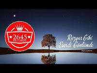 Mete Edman - Rüzgar Gibi Eserdi Gönlümde - 2645 Records