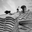 Roofers working on a variety of roofing surfaces