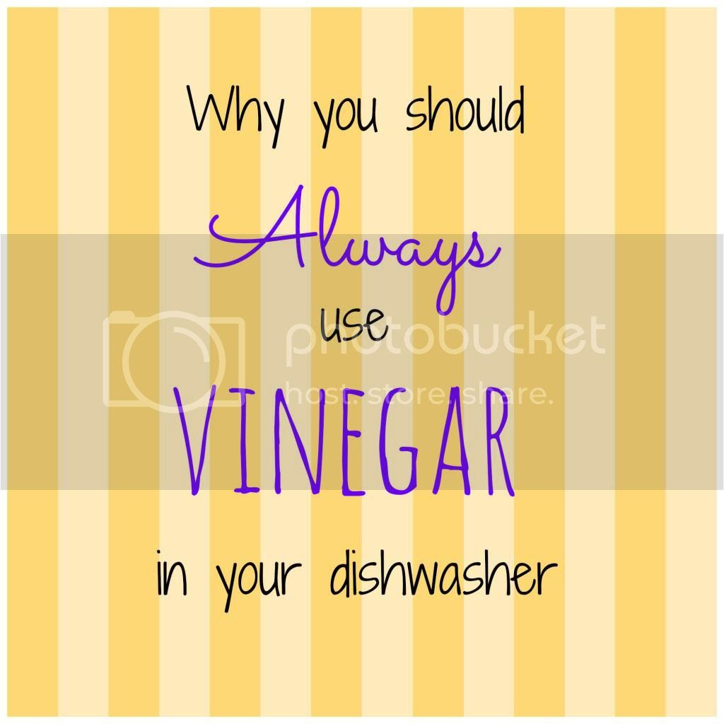 Dishwashing with Vinegar