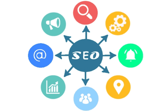solheight : I will on page SEO for your business website for $50 on www.fiverr.com