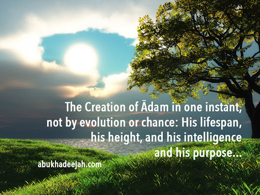 The Creation of Ādam in one instant without evolution and chance: His lifespan, his height and his intelligence.