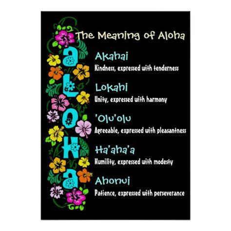 The Meaning of Aloha Poster   Zazzle
