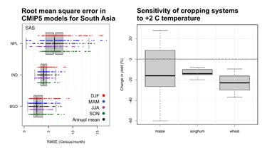 Errors in the CMIP5 ensemble and sensitivity of cropping systems