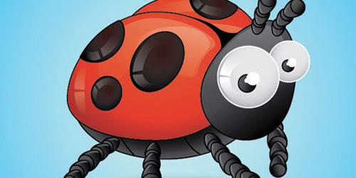 bird-insect illustrator