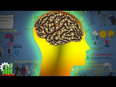 Inteligencia Emocional - El Vídeo Que Te Cambiara la Vida - Resumen Animado