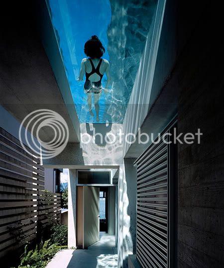 Shaw House,lap pool