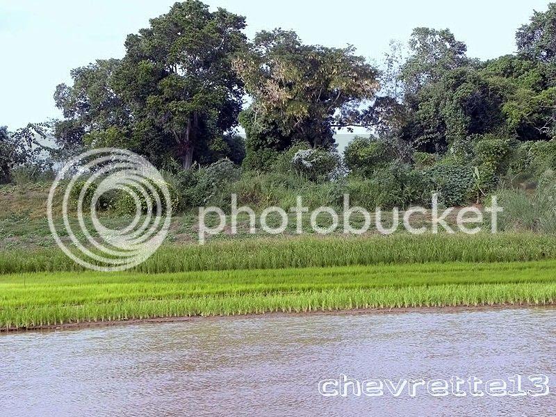 http://i1252.photobucket.com/albums/hh578/chevrette13/Madagascar/DSCN2017Copier_zpsd2e33c1e.jpg