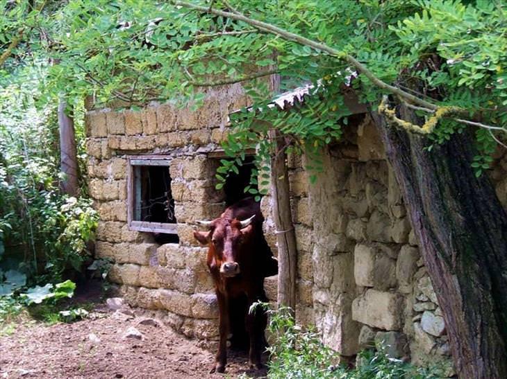 crimea travel photos
