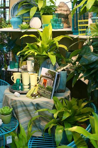 lime and aqua merchandising