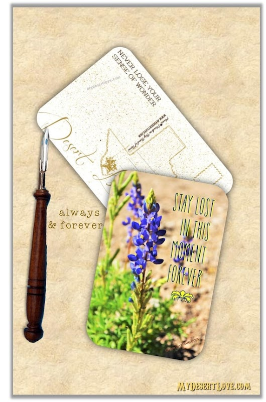 Bluebonnet Handmade Postcard Stay Lost in this Moment