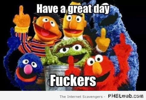 36 Have A Great Day Fookers Sesame Street Meme Pmslweb