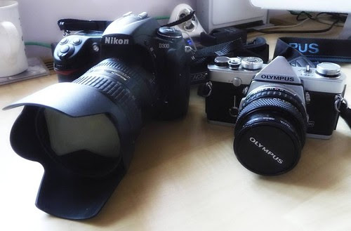 D300 and OM1