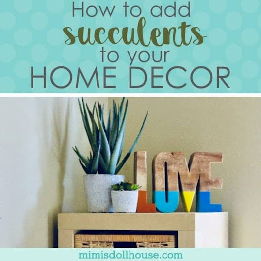 Decorating with Succulents: Add a little Green to your Home Decor