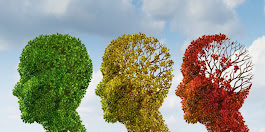 8 Nutrients to Protect the Aging Brain