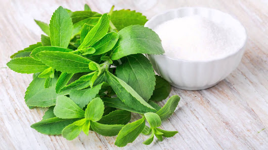 The Secret Benefit of Stevia for Health and Beauty You Must Read