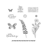 Butterfly Basics Clear Stamp Set