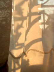 morning veil and sun writings