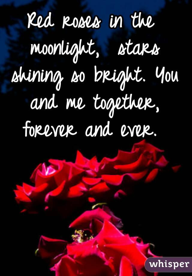 Red Roses In The Moonlight Stars Shining So Bright You And Me
