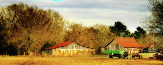 Day On The Farm - Rural Landscape by Barry Jones