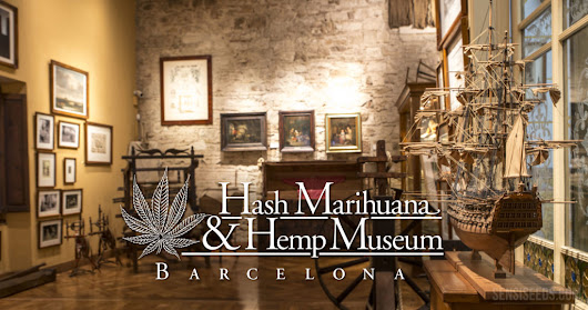 """Cannabis Film Cycle"" en el Hash Marihuana & Hemp Museum"